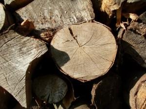 buchenholz-klein